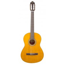 Гитара классическая Valencia VC204H