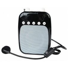 PROAUDIO VOICE AMP